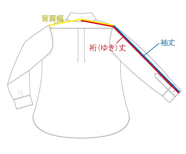 背肩幅、袖丈、裄丈の測り方